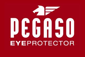gafas de seguridad PEGASO